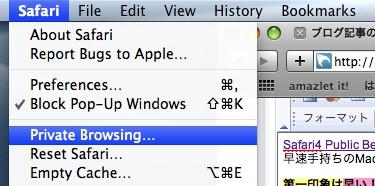 Safari4 Private Mode