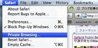 Safari4 Public Beta(5528.16)を手持ちのMacBookに導入してみました