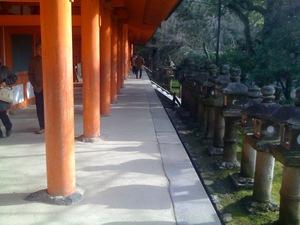 奈良公園・春日大社