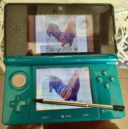 20170101_3DS.jpg