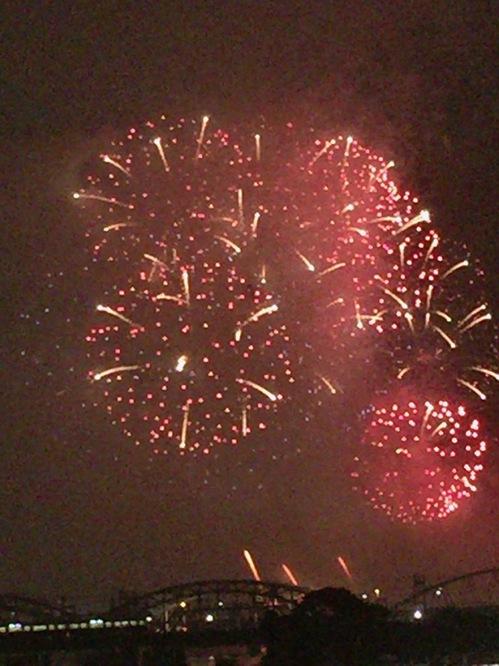第29回なにわ淀川花火大会で打ち上がった花火の一つ(淀川河川敷で撮影)