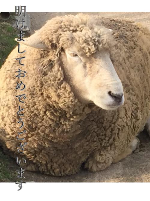 2015年丸くなった羊の年賀状
